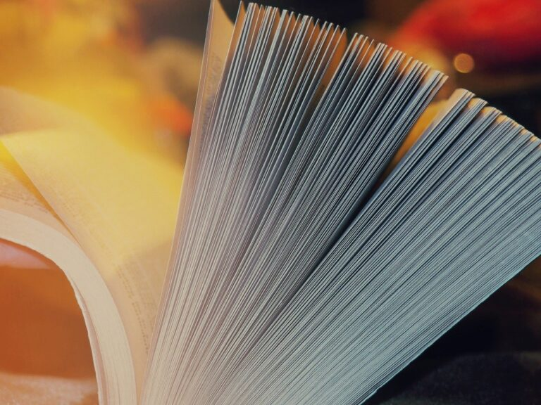 Manuale Richiesta di Trasferimento di Titolarità GSE