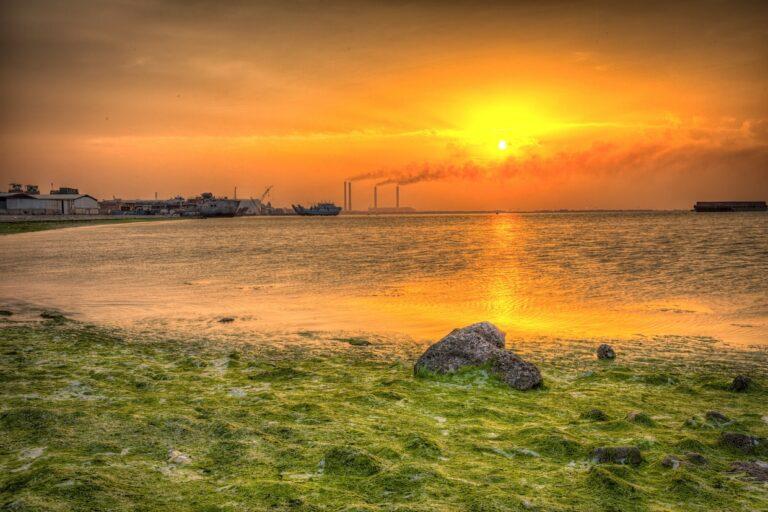 climate-change-desert-doha-doha-port-2373004