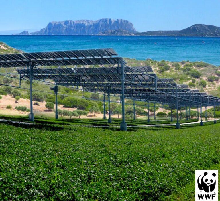 Sardegna rinnovabili